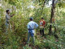 2011年11月・カンボジアSeima保護林