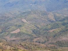2010年2月・ラオス ルアンパバーン県